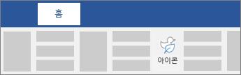 리본에 있는 아이콘 삽입 옵션