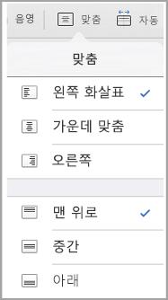 iPad 텍스트 맞춤 메뉴