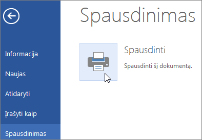 """""""Word Online"""" mygtukas Spausdinti PDF"""