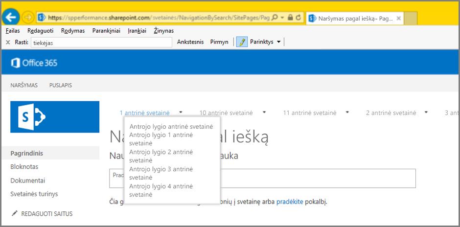 Naršymo rezultatų ekrano kopija
