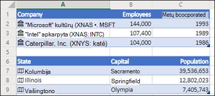 """""""Excel"""" žiniatinklio akcijų ir geografijos duomenų tipų vaizdas"""