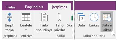 """Mygtuko Data ir laikas programoje """"OneNote 2016"""" ekrano kopija."""