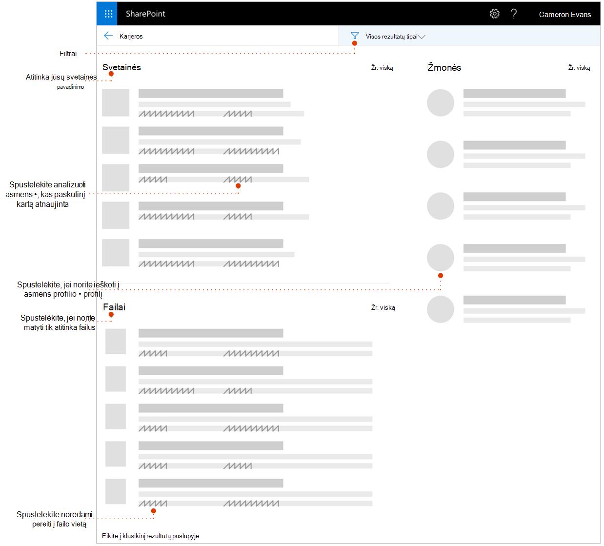 Ekrano paieškos rezultatų puslapį, kuriame žymiklių elementų analizė.