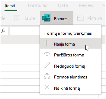 """Naujos formos parinkties įterpimas programoje """"Excel"""", skirta žiniatinkliui"""