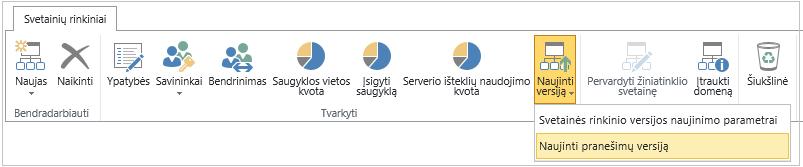 Versijos naujinimo mygtukas su pažymėta versijos naujinimo pranešimų parinktimi
