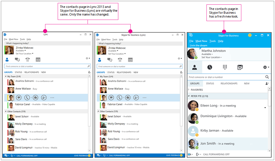 """""""Lync 2013"""" kontaktų puslapio ir """"Skype"""" verslui kontaktų puslapio palyginimas greta vienas kito"""