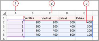 """""""Excel"""" duomenų laukai"""