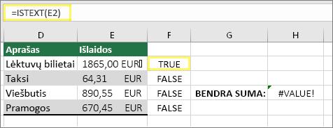 Langelis F2 =ISTEXT(E2), o rezultatas TRUE (teisinga)