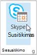 """""""Skype"""" susitikimo mygtukas"""