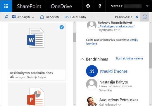 """""""OneDrive"""" verslui, skirtos """"SharePoint Server 2016"""" su 1 funkcijų paketu, išsamios informacijos srities ekrano nuotrauka"""