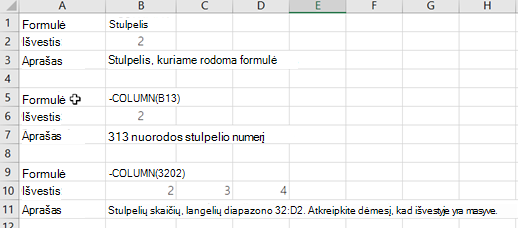 Funkcijos COLUMN pavyzdžiai