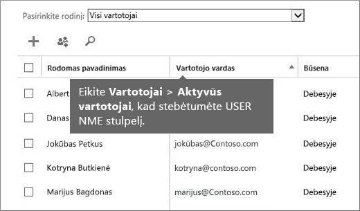 """Stulpelis Vartotojo vardas """"Office 365"""" administravimo centre"""