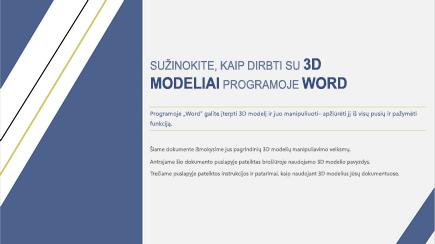 """3D """"Word"""" šablono viršelio ekrano nuotrauka"""