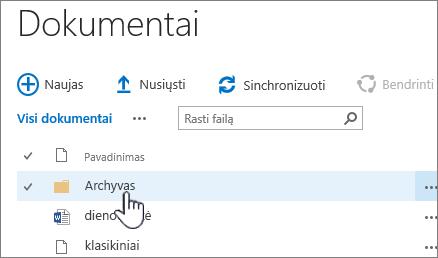 SharePoint 2016 dokumentų biblioteka, kurioje pažymėta aplanką