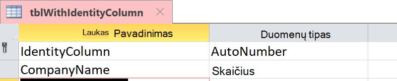 Rodyti, kad tapatybės stulpelis nustatytas kaip laukas Automatinis_numeravimas