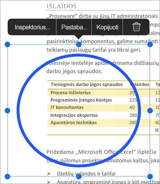 PDF ženklinimo redagavimas