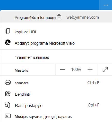 """Ekrano nuotrauka, kurioje rodoma """"Yammer"""" kompiuterio taikomosios programos informacija"""