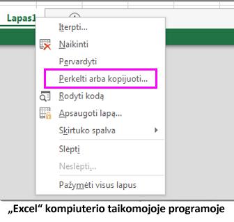 """Lapo kopijavimo galimybė yra """"Excel"""" kompiuterio taikomojoje programoje"""