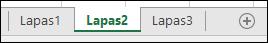 """""""Excel"""" darbalapio skirtukų vaizdas"""