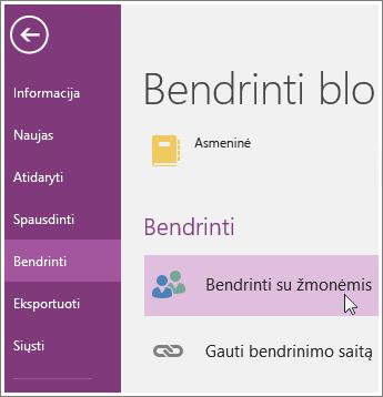 """Ekrano nuotrauka, kaip bendrai naudoti su žmonėmis programoje """"OneNote 2016""""."""