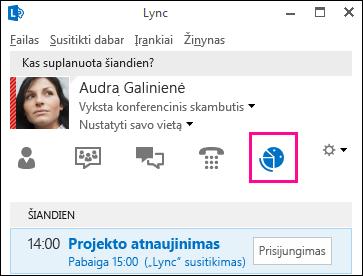 Susitikimų rodinio skirtuko ekrano kopija