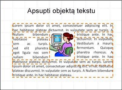 Skaidrė su rodomu objektu, teksto laukeliais ir visu tekstu.