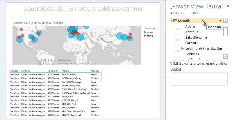 """Į """"Power View"""" lentelę automatiškai įtraukiami numatytųjų laukų rinkiniai"""
