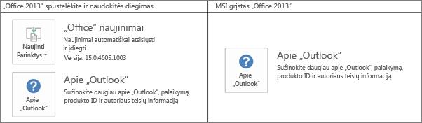 """Diagrama, kurioje rodoma, kaip nustatyti, ar """"Office 2013"""" diegimas yra pagrįstas technologija """"spustelėkite ir naudokitės"""", ar MSI"""