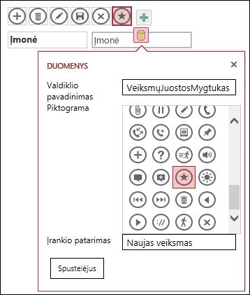 """Pasirinktinių valdiklių įtraukimas į """"Access"""" taikomąją programą"""