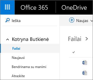 """Ekrano nuotrauka, vaizduojanti rodinį Failai programoje """"OneDrive"""" verslui"""