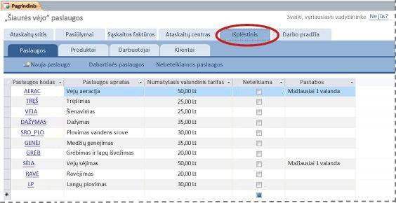"""""""Services"""" duomenų bazės šablono skirtukas Papildomai"""