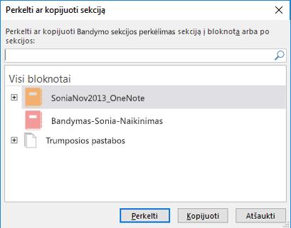 """""""OneNote for Windows 2016"""" perkėlimo arba kopijavimo skyriaus dialogo langas"""