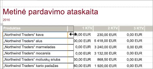 Metų pardavimo ataskaitos produkto ekrano fragmentas