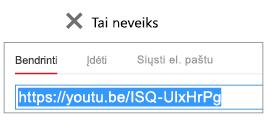 """Jei įdėjimo kodo prasideda """"http"""", vaizdo įrašo įdėti nepavyks."""