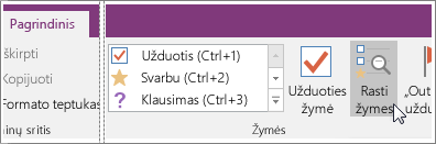"Rasti žymes mygtuko ekrano kopija programoje ""OneNote 2016""."