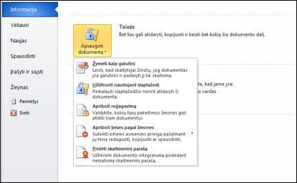 Mygtukas Apsaugoti dokumentą su parinktimis