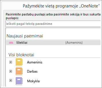 """""""OneNote"""" lango, kuriame galite pasirinkit, į kurį puslapį perkelti """"Skype"""" pastabas, ekrano kopija"""