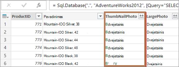 Duomenų su dvejetainiais stulpeliais pavyzdys