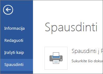 """Spausdinimo komanda programoje """"Word Web App"""""""
