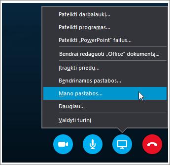 """Ekrano kopija, kurioje rodoma, kaip bendrinti """"OneNote 2016"""" pastabas """"Skype"""" verslui"""