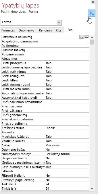 Prieigos ekrano ypatybių lapas su surikiuoti pagal abėcėlę ypatybės