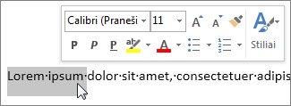 Mažoji įrankių juosta su pažymėtu tekstu