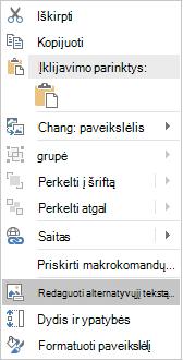 """Vaizdų meniu """"Excel Win32"""" redagavimo Alternatyvusis tekstas"""