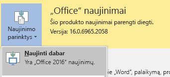 Office 2016 naujausią versiją, spustelėkite naujinimo parinktys, tada Naujinti dabar.