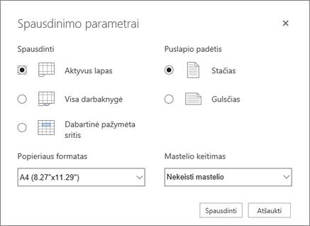 Spausdinimo parametrų parinktys spustelėjus failo > spausdinti