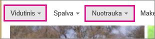 """""""Bing"""" vaizdų ieškos rezultatai filtruojami kaip vidutinio dydžio nuotraukos"""
