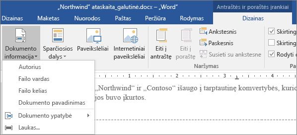 Dokumento informacijos parinktys rodomos skirtuke Antraštės ir poraštės įrankiai.