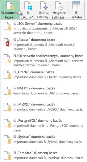 Gauti duomenis iš duomenų bazės dialogo langas
