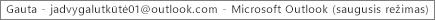 """Žyma lango viršuje nurodo asmens, kuriam priklauso aplankas Gauta, vardą ir ar """"Outlook"""" veikia saugiuoju režimu"""