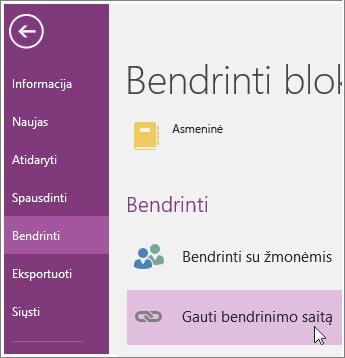 """Gauti bendrinimo sąsają ekrano sąsajos programoje """"OneNote 2016"""" ekrano nuotrauka."""